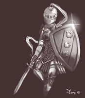 knight in shinin armor by carapaces
