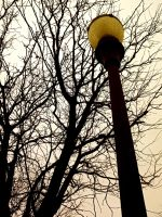 Light Pole by krissybdesigns