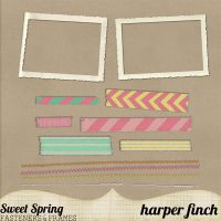 Sweet Spring Fasteners & Frames by harperfinch