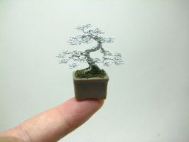 Miniature wire bonsai sculpture by KenToArt