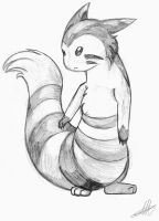 Furret by Drayna
