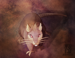 (1 hr) Warm Up 20 - Raticate by Pachabel