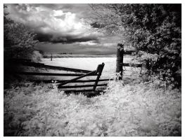 Gate Onto The Pasture. by didjerama