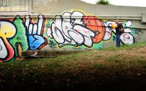 Graffiti Documented by stonemx
