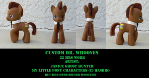 Custom Dr. Whooves by janiceghosthunter