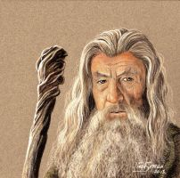 Gandalf the Grey by Artsy50