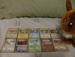 My Eevee Collection thus far by superstarhollyann