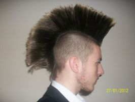 Current Mohawk Style by Zodiax3