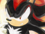 Shadow The Hedgehog by rouge11