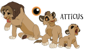 Atticus Character Sheet by RealUnionJCatART