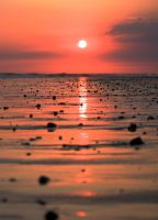 Sunset at the seaside by mariana-a