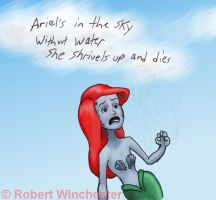 Ariel's in the sky by Bobert-Rob