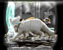 The Blessing of Starclan by snowyfoot3000