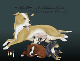 Adoptable Pitbulls by MadDingo92