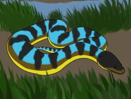 Your Favorite Snake - DeeJay by TwilightDragon0