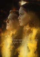 Tributes on fire by Soph-LW