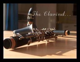 The Clarinet by Tamin