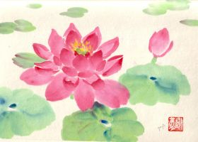 water lily by whatupgee