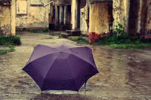 purple umbrella by lorienzeren