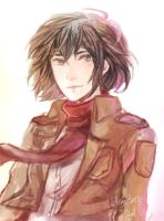 SnK : Mikasa by Roadccan