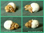 Hatching Turtle by Noadi