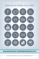 Sleek Social Media Icons 2012 by Designbolts