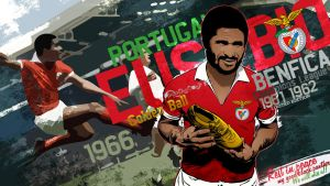 Tribute to Eusebio - vector by akyanyme