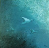 Mantas II by TeresaClark