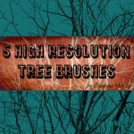 Photoshop Tree Brushes by cmccoyphoto