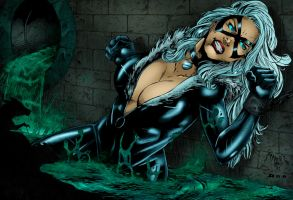 BlackCat by Ta2dsoul