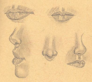 Nose and Lips Practice by DarkLikeVader