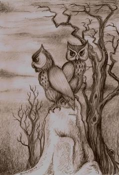 A tale of two owls by EvilineMoonflesh