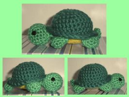 Turtle by Faliona