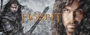 Kili The Hobbit Cover Photo by DeepXC