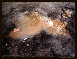 - groundwater : 03 by fragilemuse-org