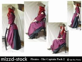 Pirates - The Captain Pack 2 by mizzd-stock