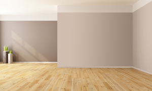 Empty Rooms Background by bubupoodle