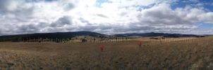 Pano of Pheasant Hunt Landscape 2 by 12monthsOFwinter