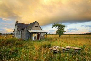 Abandoned on 11 Mile Road by tfavretto
