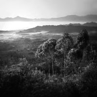 Javan Valley by Hengki24