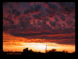 Fire Burn April Storm Sunset by RooCat