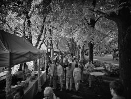 Alt-Tegel Festival Berlin infrared by MichiLauke