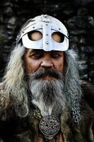 The viking by Pullus
