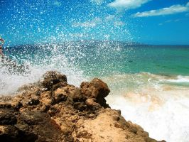 ++ paradise + oceanspray by charmbuster