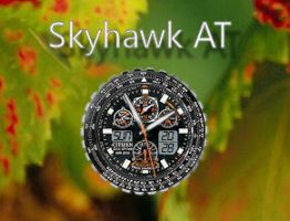 Skyhawk AT by rodfdez
