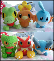 Hoenn Region Pokedolls by Fishlover