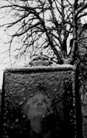 given snow by gndrfck