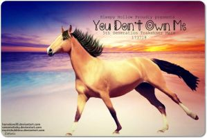 You Don't Own Me by JuneButterfly-stock