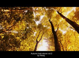 Autumn look above vol.2 by niwaj