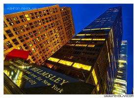 Harry b Helmsley Bldg HDR 22 by AzankinoKING